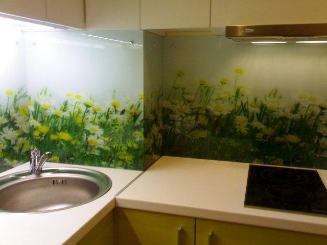 Скинали - стеклянные фартуки для кухни 8